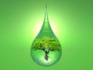 Biologiczne metody pozyskiwania wodoru